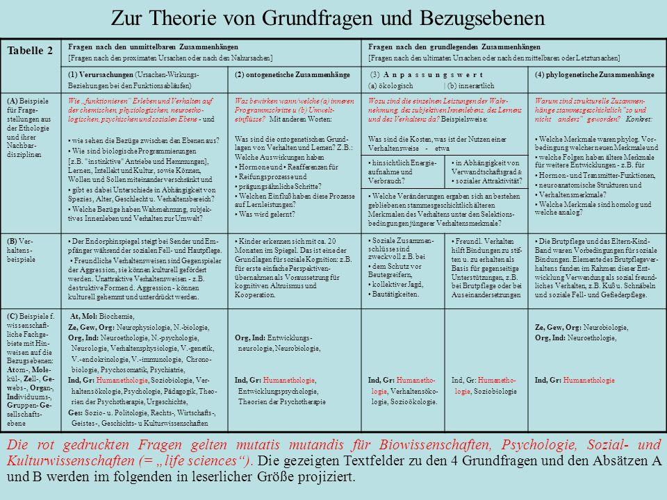 Zur Theorie von Grundfragen und Bezugsebenen