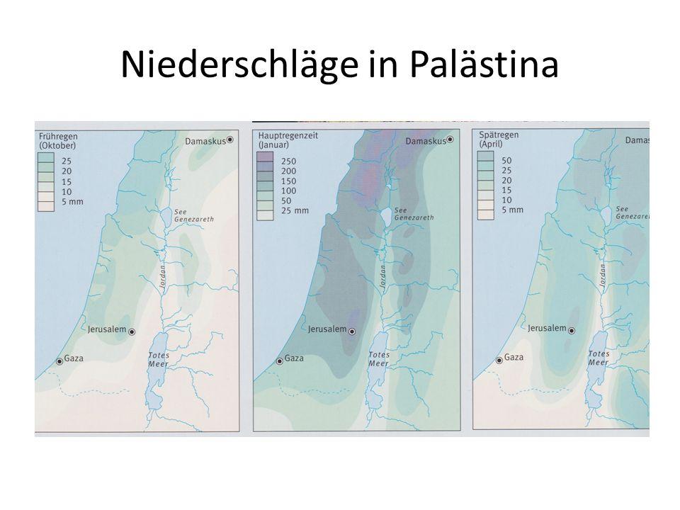 Niederschläge in Palästina