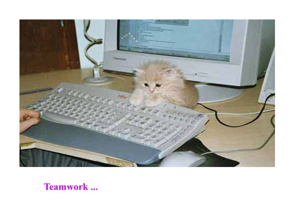 Teamwork ...