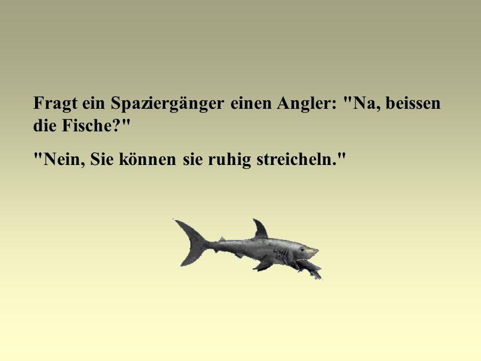 Fragt ein Spaziergänger einen Angler: Na, beissen die Fische