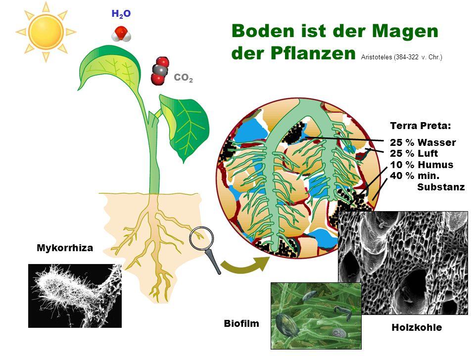 Boden ist der Magen der Pflanzen Aristoteles (384-322 v. Chr.)