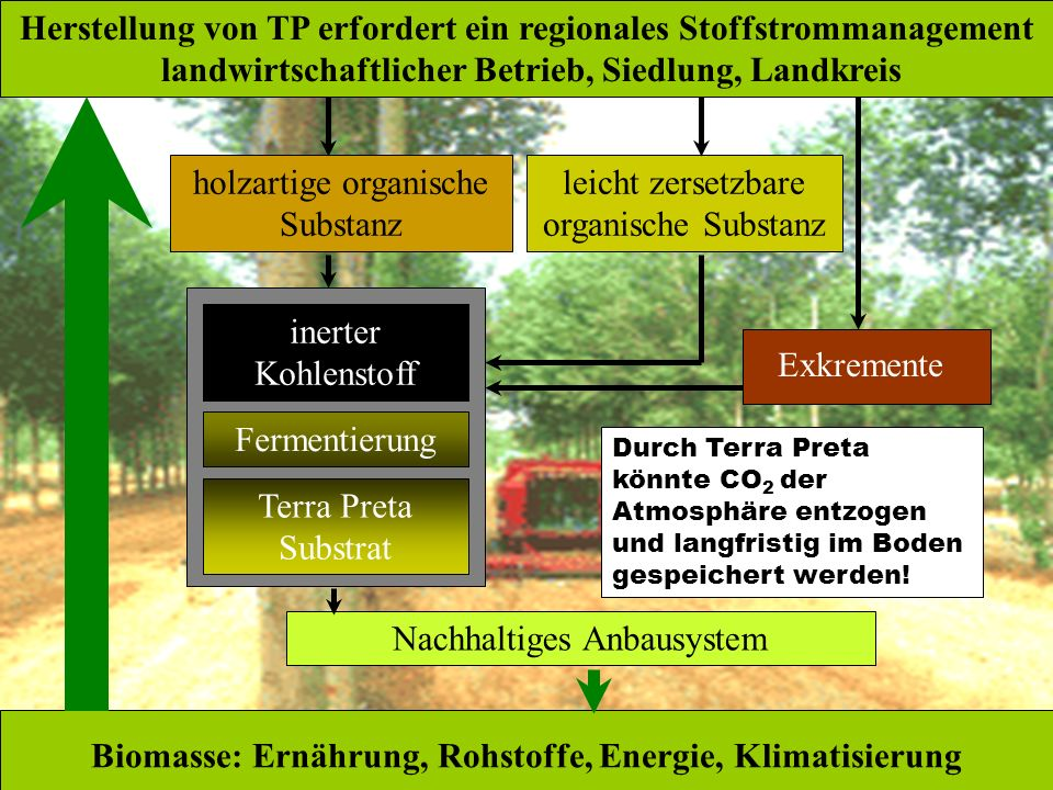 Biomasse: Ernährung, Rohstoffe, Energie, Klimatisierung