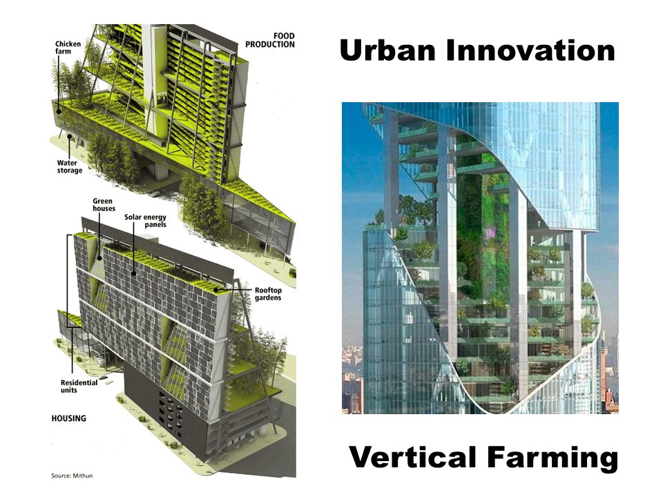 Urban Innovation Vertical Farming