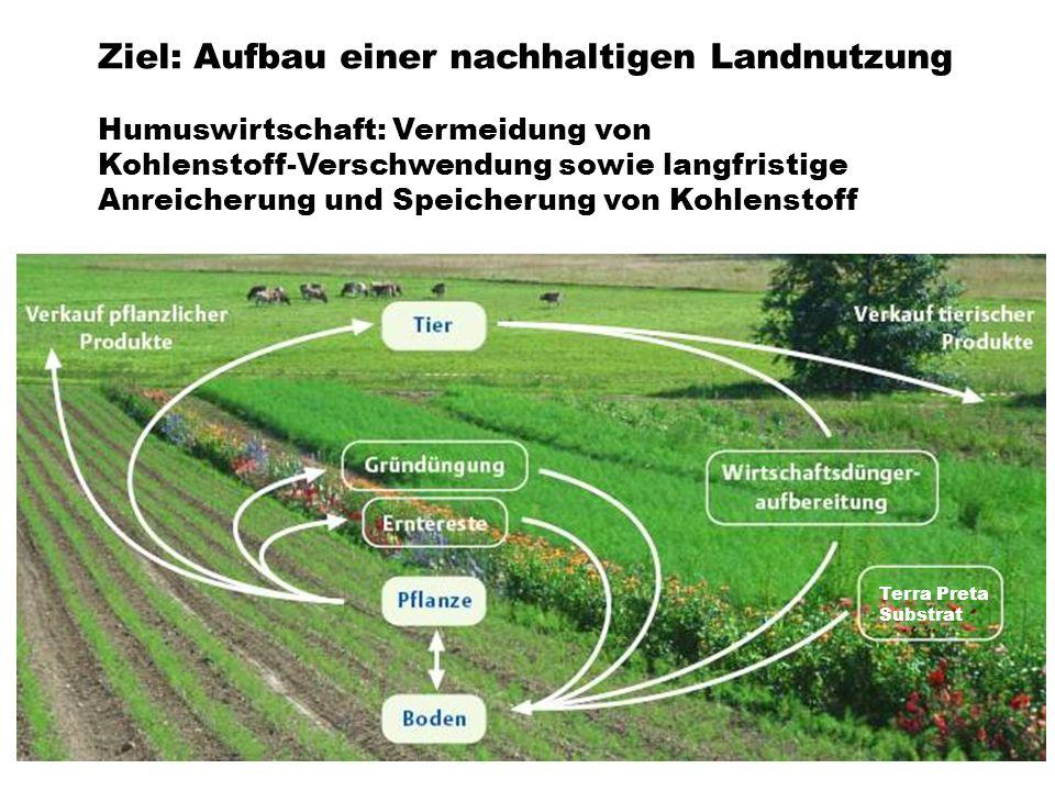 Ziel: Aufbau einer nachhaltigen Landnutzung Humuswirtschaft: Vermeidung von Kohlenstoff-Verschwendung sowie langfristige Anreicherung und Speicherung von Kohlenstoff