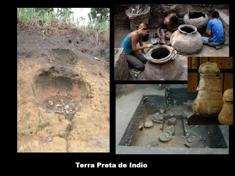 Terra Preta de Indio