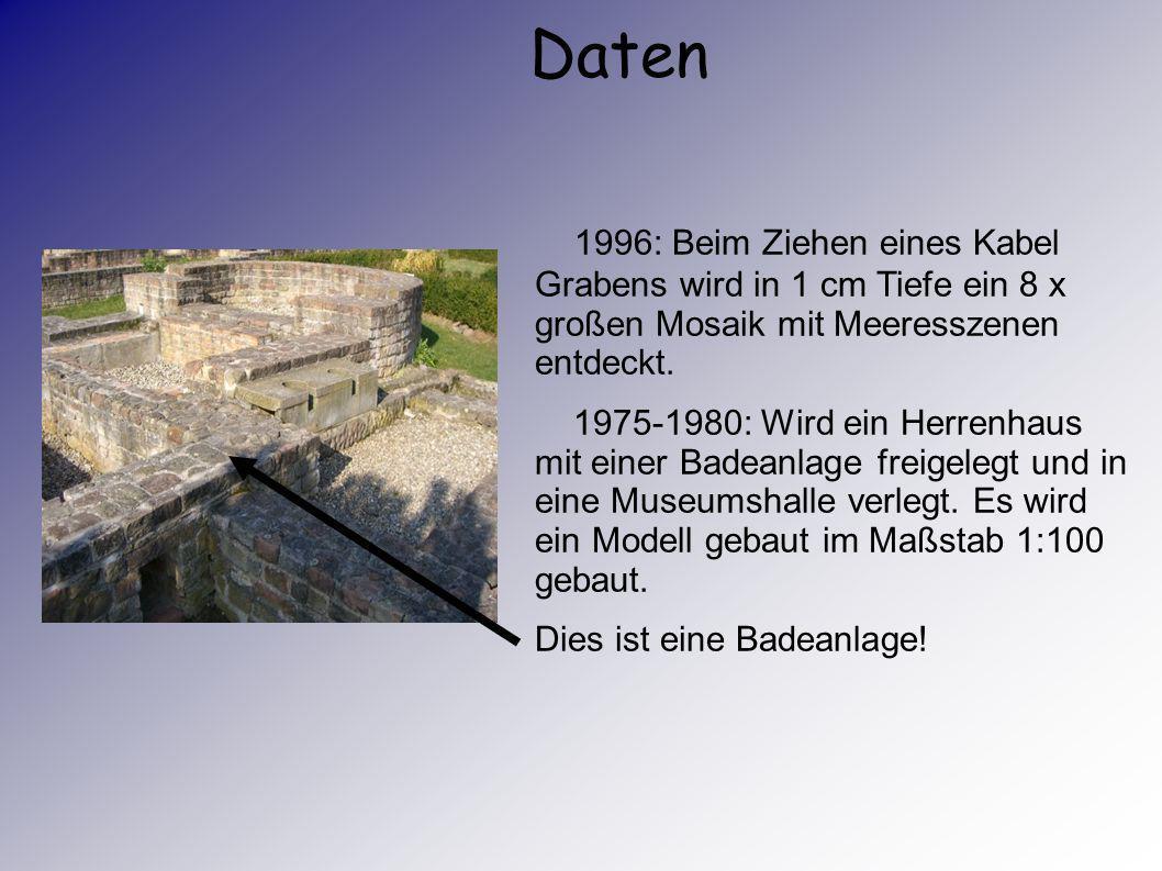 Daten 1996: Beim Ziehen eines Kabel Grabens wird in 1 cm Tiefe ein 8 x großen Mosaik mit Meeresszenen entdeckt.