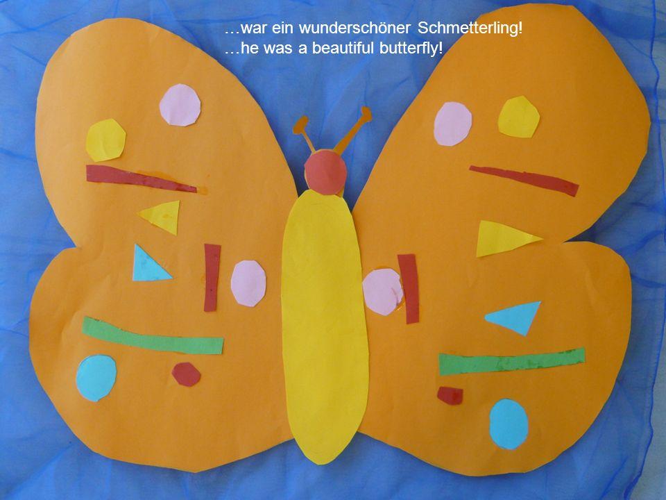 …war ein wunderschöner Schmetterling!