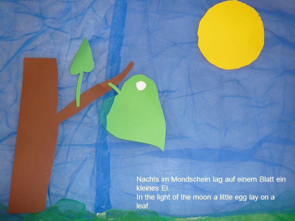Nachts im Mondschein lag auf einem Blatt ein kleines Ei.