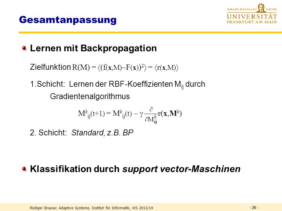 Gesamtanpassung Lernen mit Backpropagation