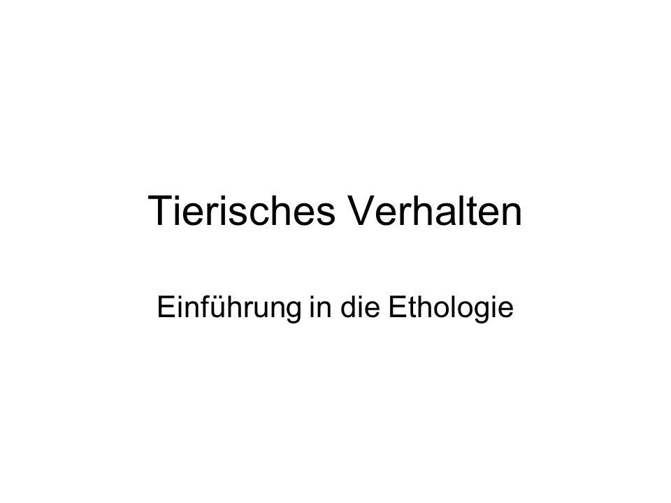 Einführung in die Ethologie
