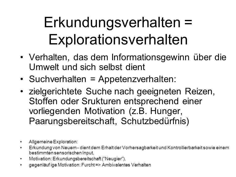 Erkundungsverhalten = Explorationsverhalten