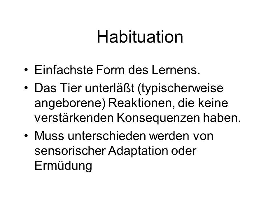 Habituation Einfachste Form des Lernens.