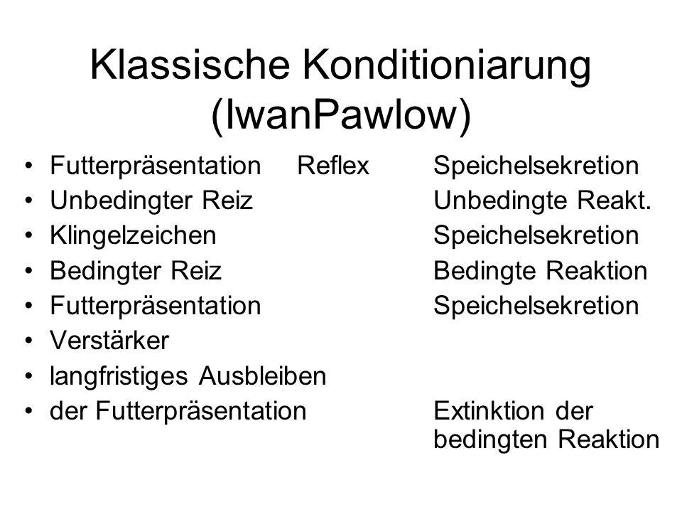 Klassische Konditioniarung (IwanPawlow)