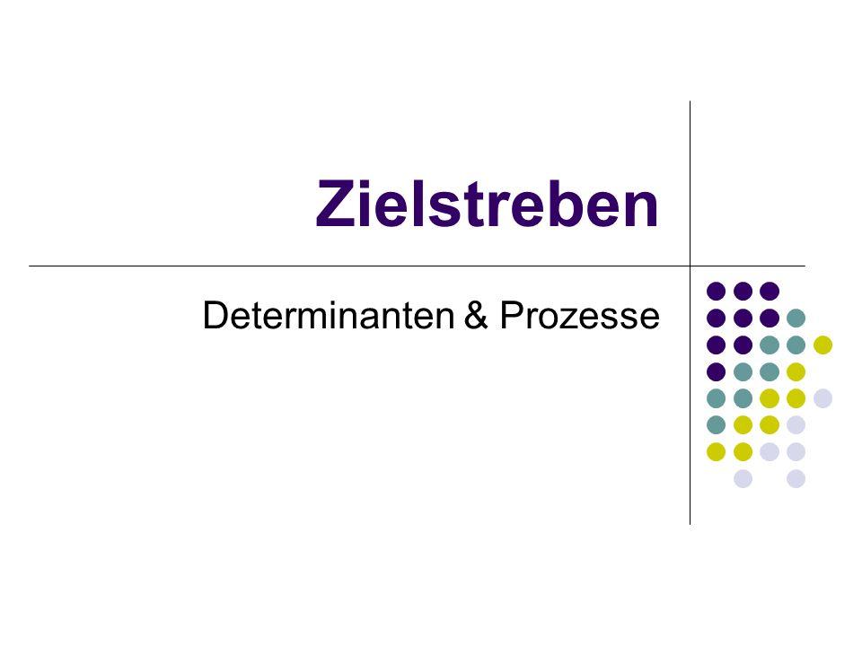Determinanten & Prozesse