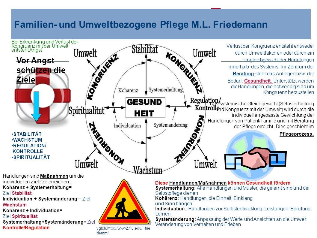 Familien- und Umweltbezogene Pflege M.L. Friedemann