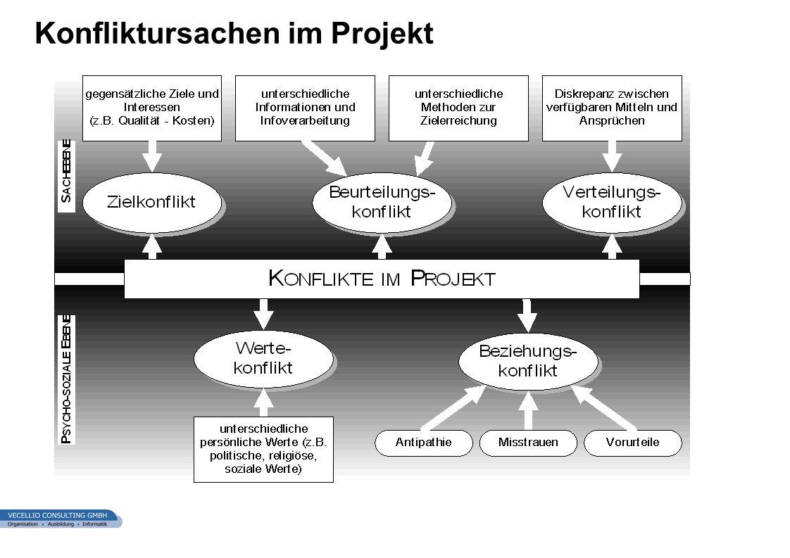 Konfliktursachen im Projekt