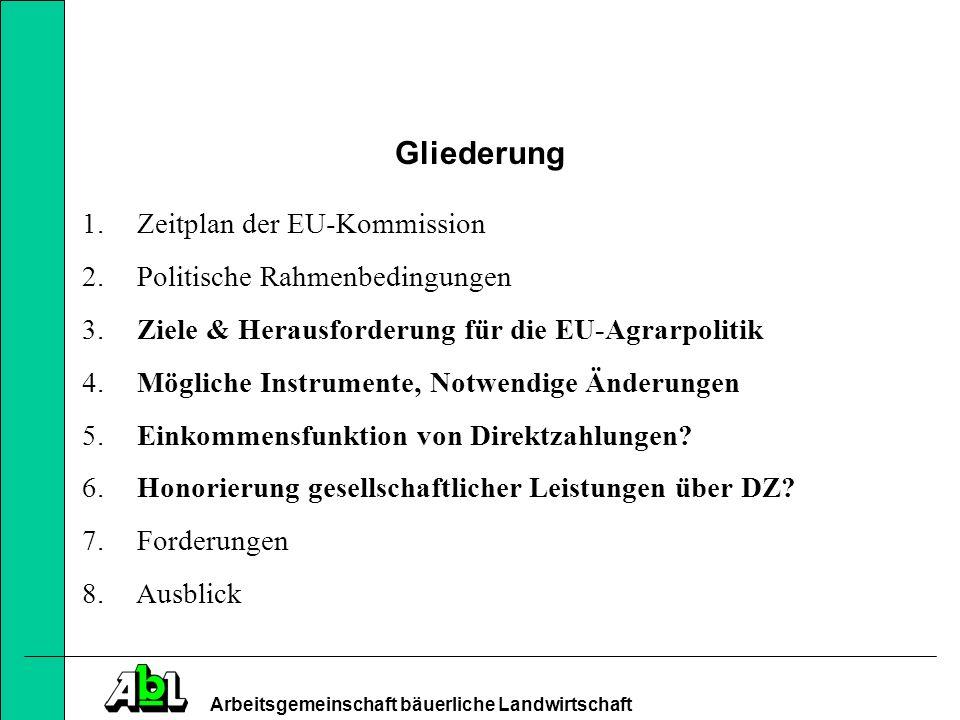 Gliederung Zeitplan der EU-Kommission Politische Rahmenbedingungen