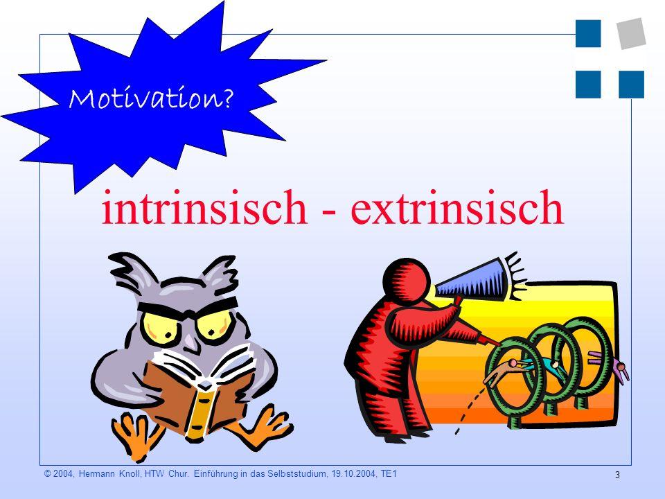 intrinsisch - extrinsisch