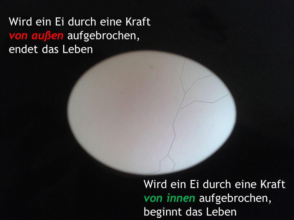 Wird ein Ei durch eine Kraft