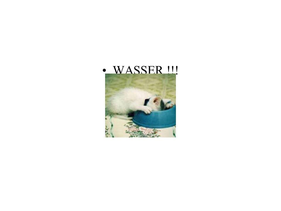 WASSER !!!