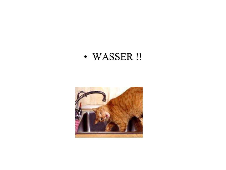WASSER !!