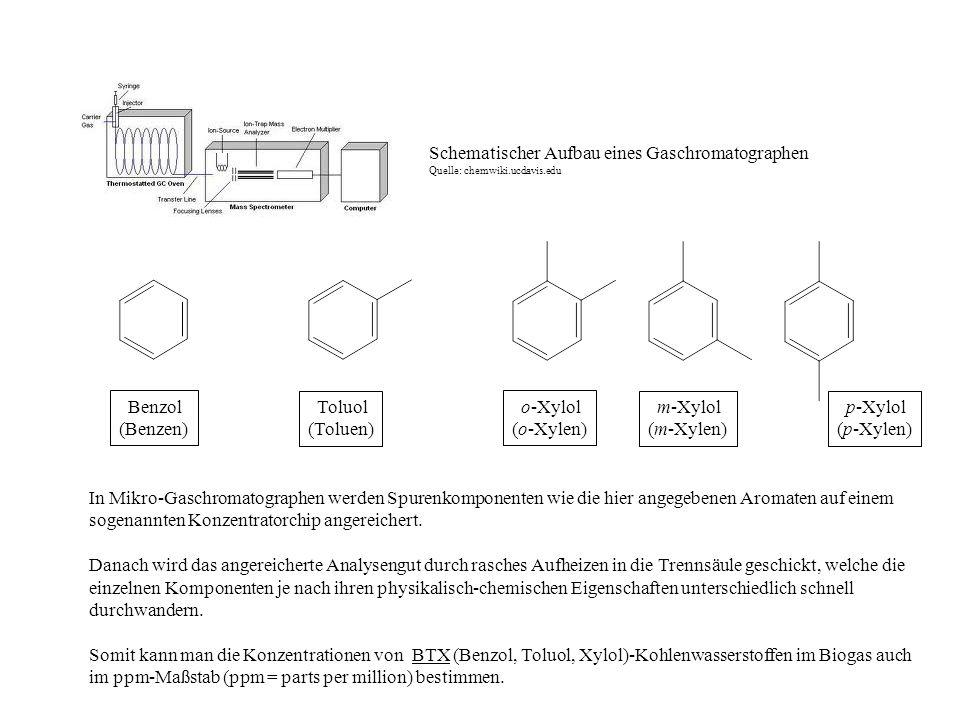 Schematischer Aufbau eines Gaschromatographen