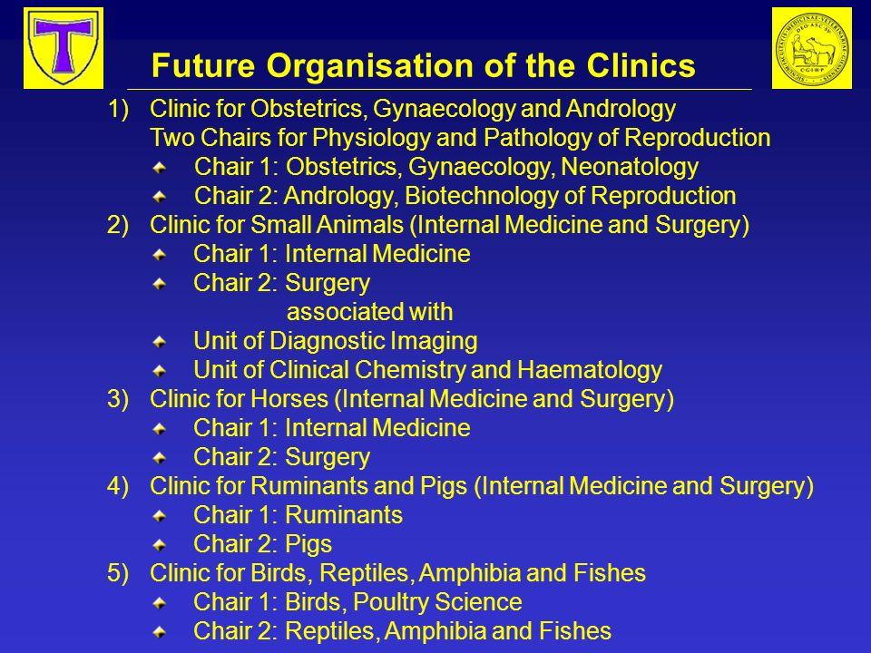 Future Organisation of the Clinics