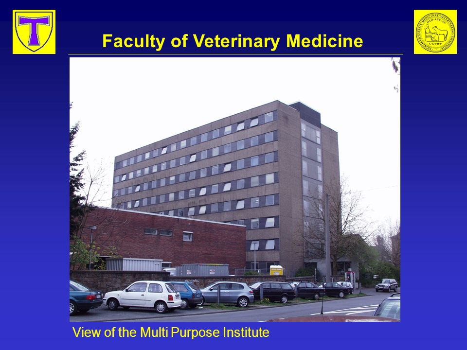 Faculty of Veterinary Medicine