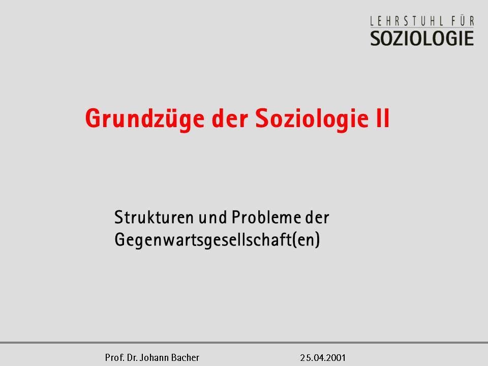 Strukturen und Probleme der Gegenwartsgesellschaft(en)