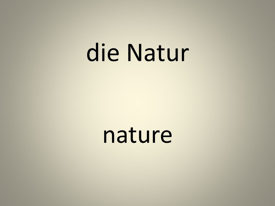 die Natur nature