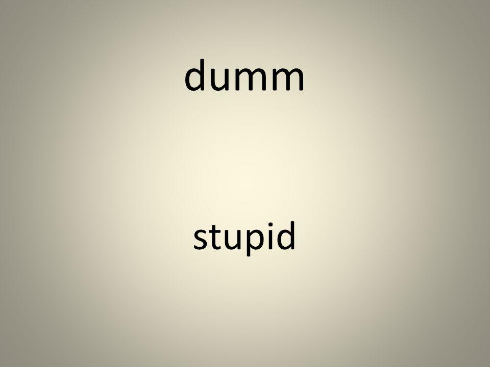 dumm stupid