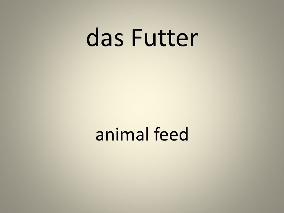 das Futter animal feed