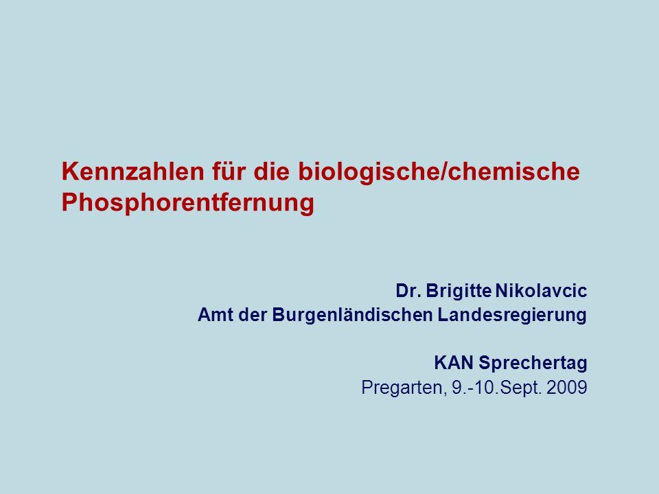 Kennzahlen für die biologische/chemische Phosphorentfernung