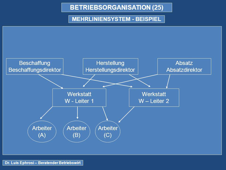BETRIEBSORGANISATION (25) MEHRLINIENSYSTEM - BEISPIEL