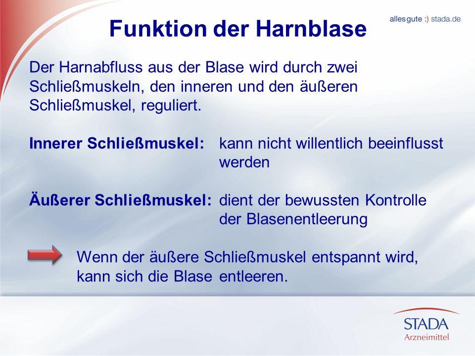 Funktion der Harnblase