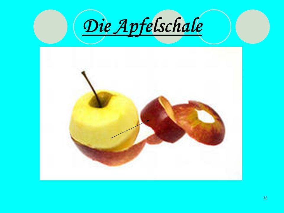 Die Apfelschale
