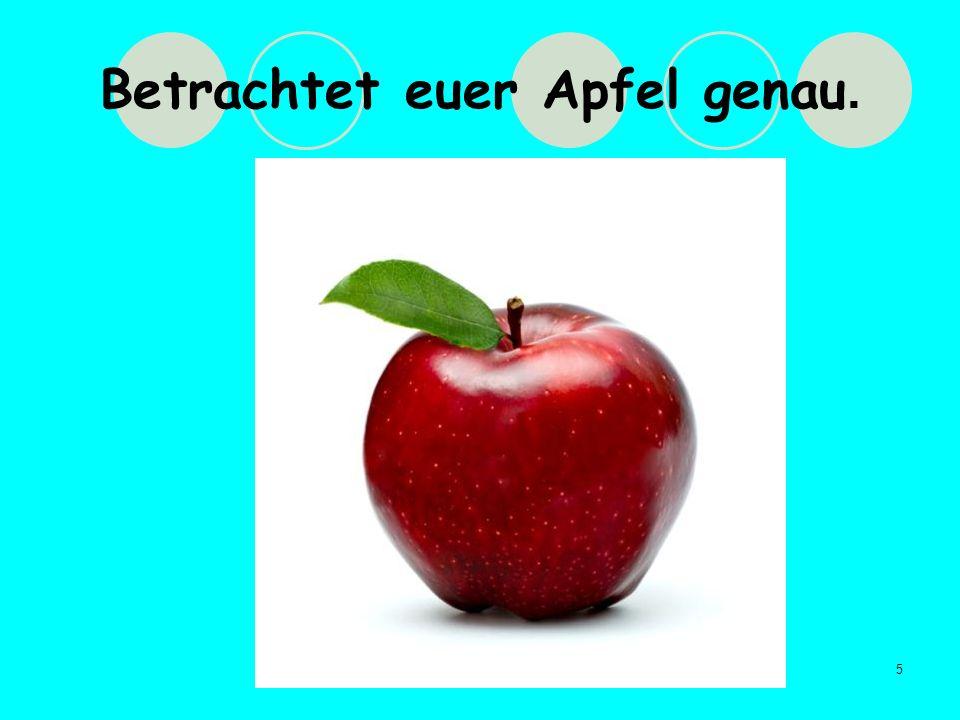Betrachtet euer Apfel genau.
