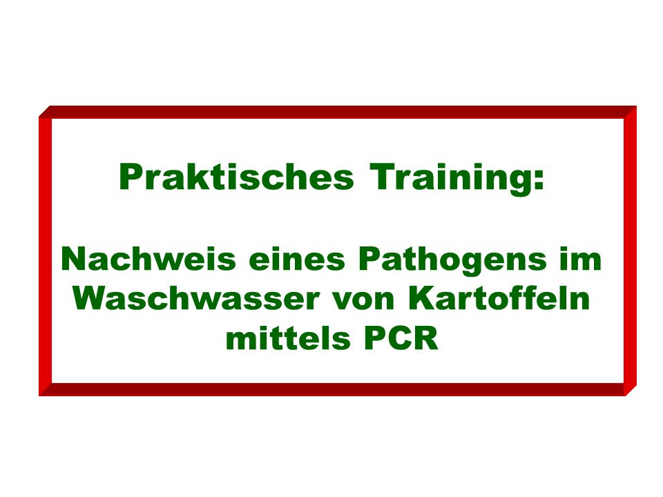 Praktisches Training: