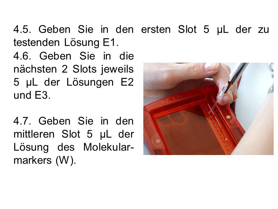 4.5. Geben Sie in den ersten Slot 5 µL der zu testenden Lösung E1.