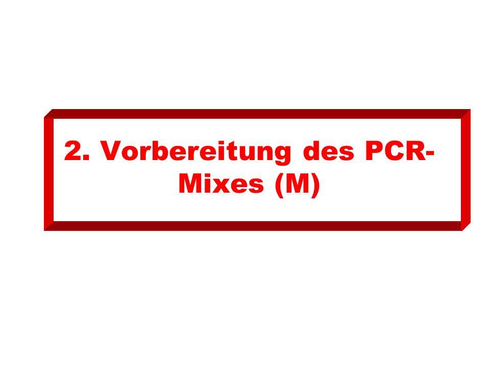 2. Vorbereitung des PCR-Mixes (M)