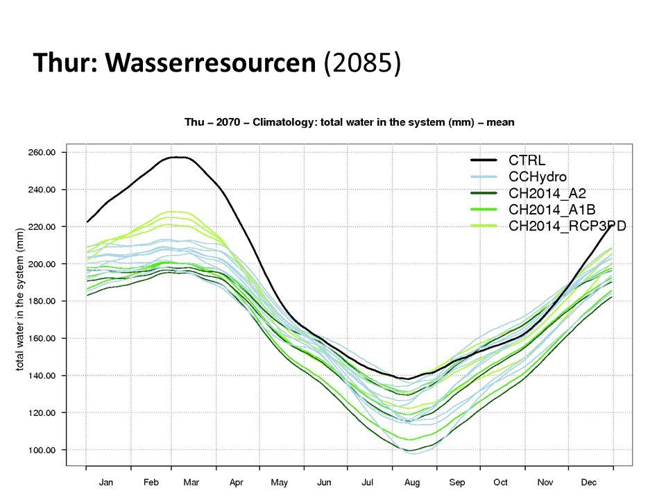 Thur: Wasserresourcen (2085)
