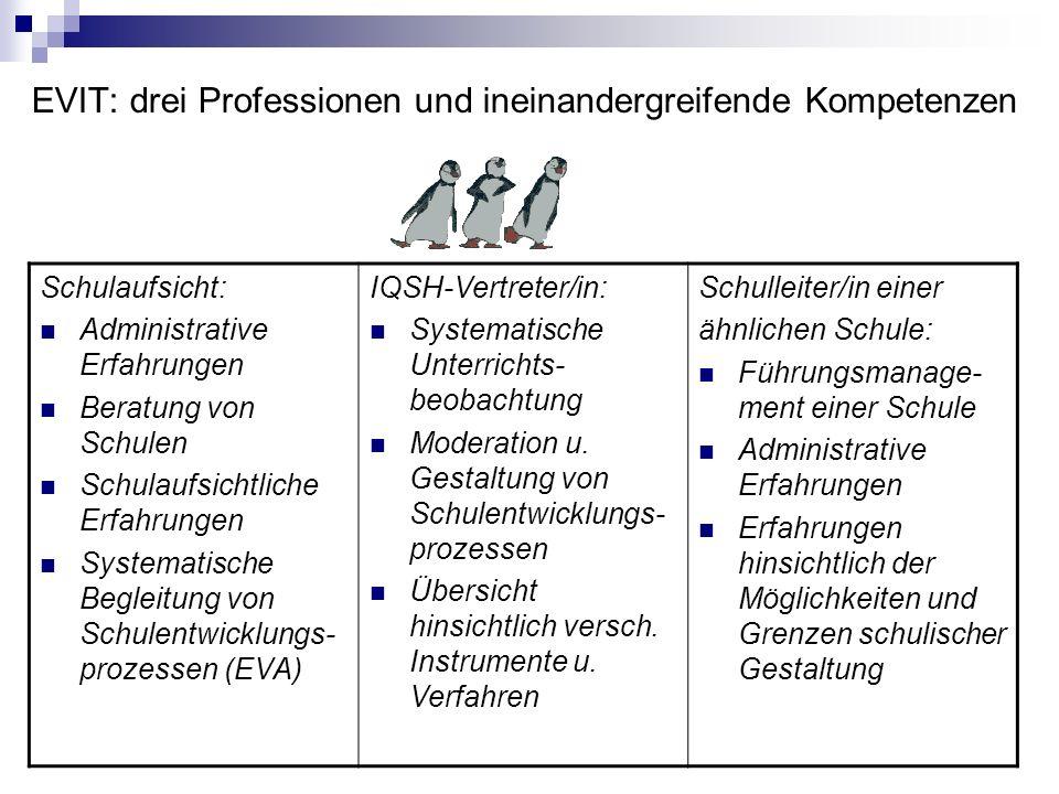 EVIT: drei Professionen und ineinandergreifende Kompetenzen