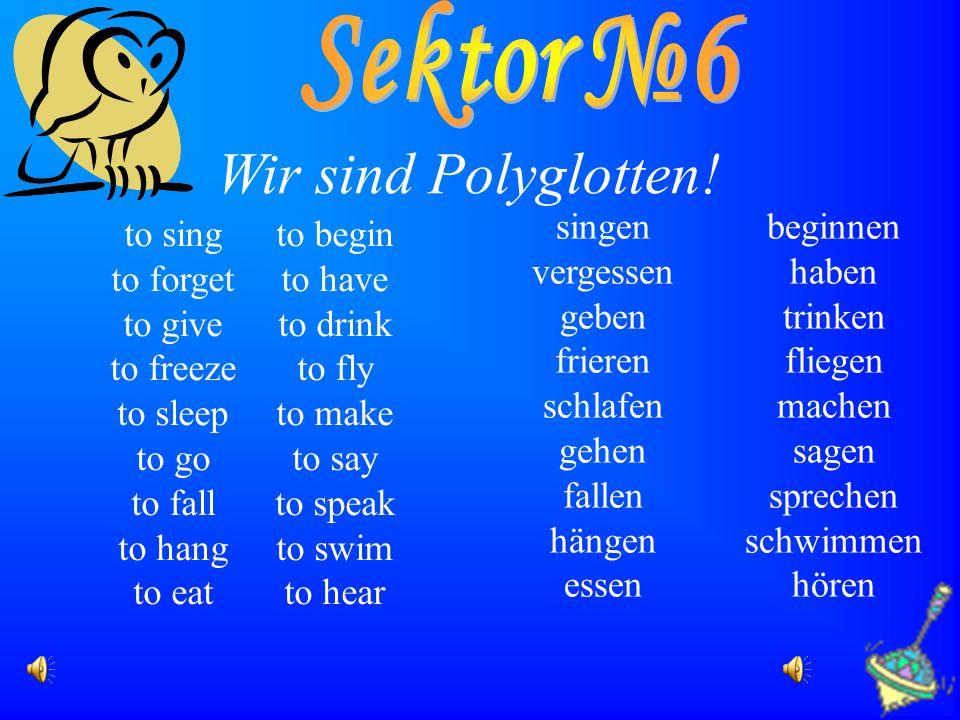 Wir sind Polyglotten! Sektor №6 singen beginnen vergessen haben geben