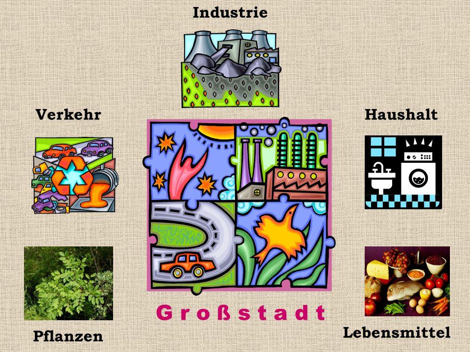 Industrie Verkehr Haushalt G r o ß s t a d t Lebensmittel Pflanzen