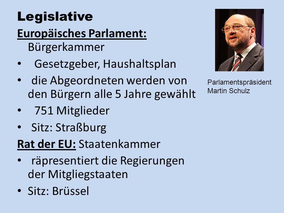 Europäisches Parlament: Bürgerkammer Gesetzgeber, Haushaltsplan