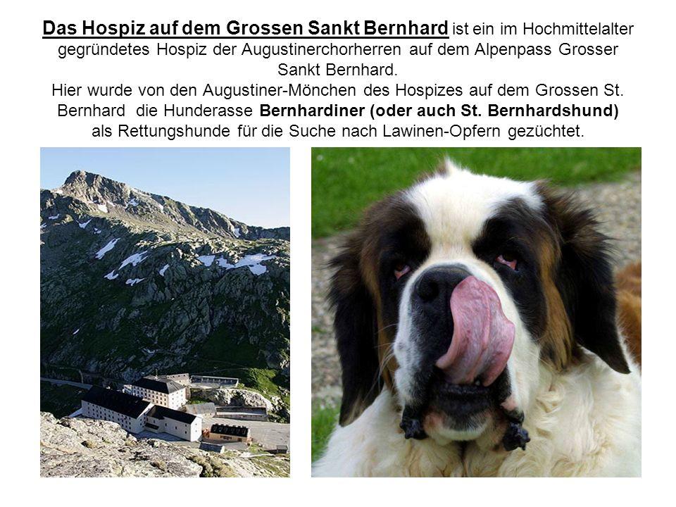 Das Hospiz auf dem Grossen Sankt Bernhard ist ein im Hochmittelalter gegründetes Hospiz der Augustinerchorherren auf dem Alpenpass Grosser Sankt Bernhard.