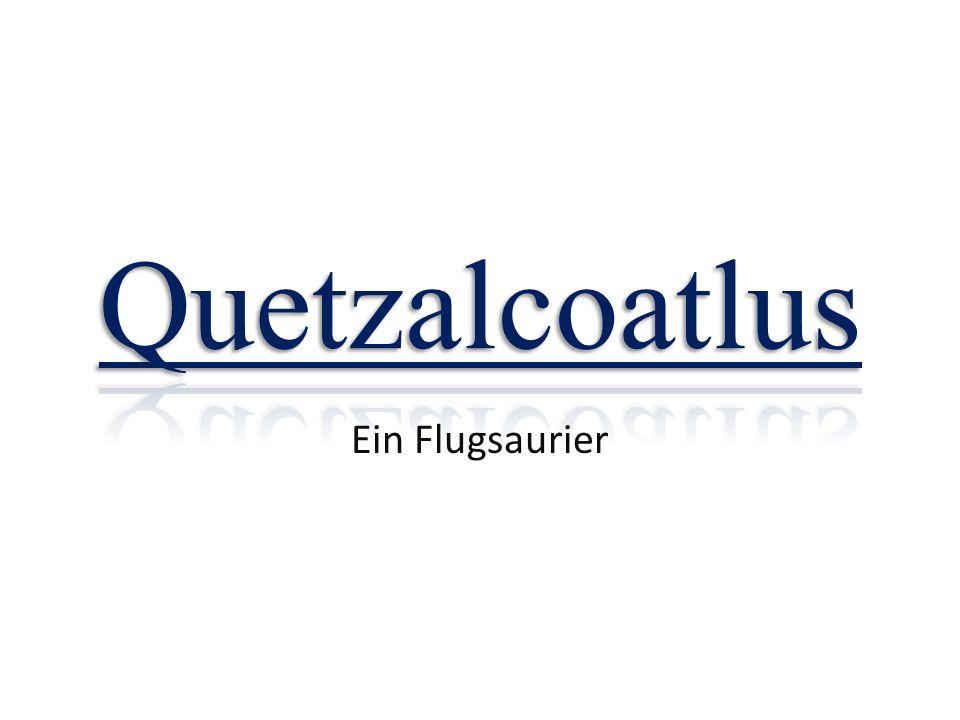 Quetzalcoatlus Ein Flugsaurier