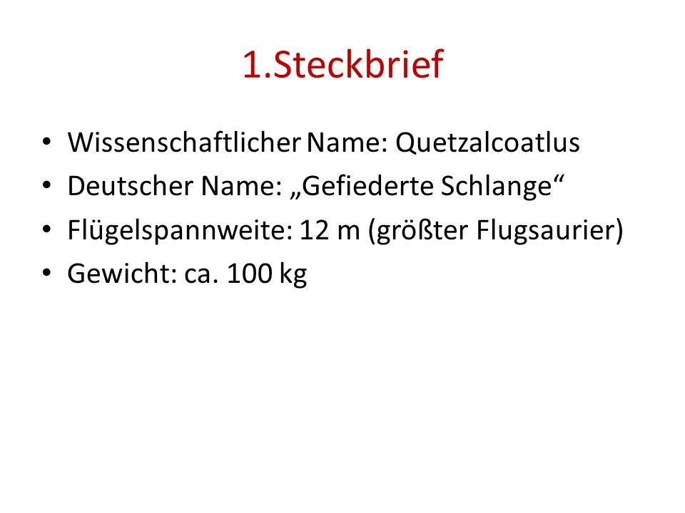 1.Steckbrief Wissenschaftlicher Name: Quetzalcoatlus