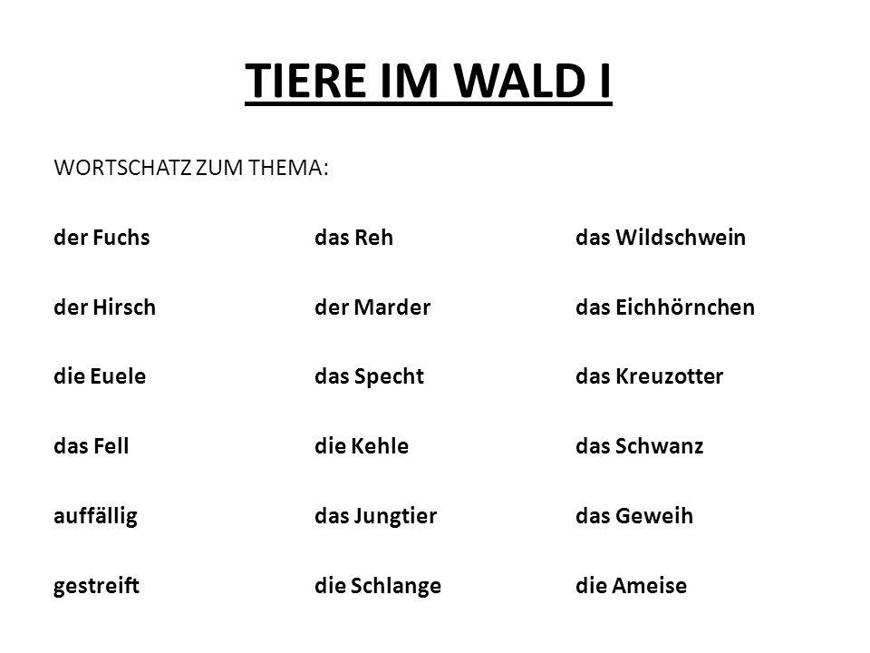 TIERE IM WALD I