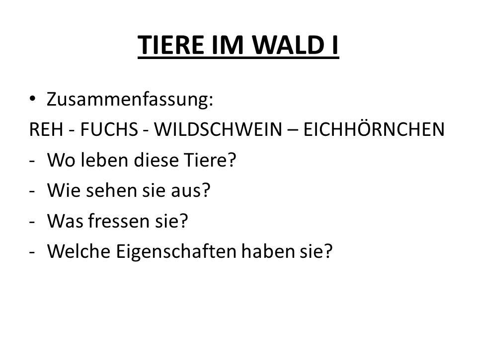 TIERE IM WALD I Zusammenfassung: